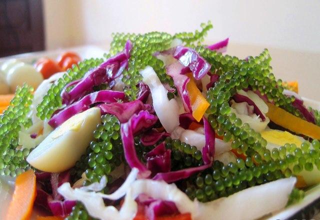 Salad chay